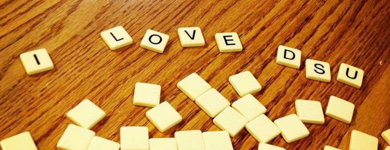 i-love-dsu